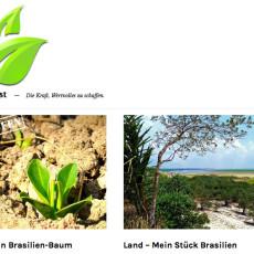 Diesen Artikel lesen: Neuer Shop für das Non-Profit-Projekt: Invest-in-Forest