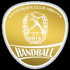 Mehr Details zu: Über das Engagement von netzGiraffen – Heute: der SC DHfK Leipzig e. V. Handball
